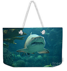 Weekender Tote Bag featuring the photograph Sand Shark by Robert Meanor