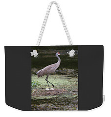 Weekender Tote Bag featuring the photograph Sandhill Crane And Eggs by Paul Rebmann