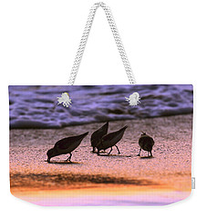 Sandpiper Morning Weekender Tote Bag