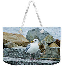 Weekender Tote Bag featuring the photograph Sardonic Seagull by Kristen Fox