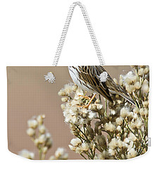 Weekender Tote Bag featuring the photograph Savannah Sparrow by Bryan Keil