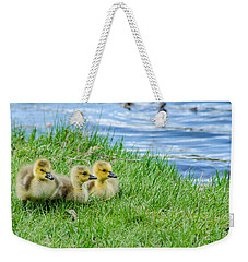 Weekender Tote Bag featuring the photograph Staying Together by Steven Santamour
