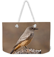 Say's Phoebe On A Fence Post Weekender Tote Bag
