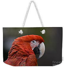 Weekender Tote Bag featuring the photograph Scarlet Macaw by David Millenheft