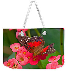 Scarlet Swallowtail Butterfly On Crown Of Thorns Flowers Weekender Tote Bag