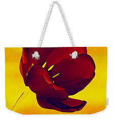 Scarlet Tulip At Sunset Weekender Tote Bag