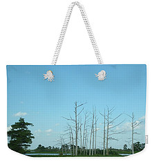 Weekender Tote Bag featuring the photograph Scenic Swamp Cypress Trees by Joseph Baril