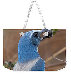 Weekender Tote Bag featuring the photograph Scrub Jay With Acorn by Paul Rebmann
