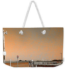 Weekender Tote Bag featuring the photograph Sea Gulls Watching Over The Wetlands In Orange by Amazing Photographs AKA Christian Wilson