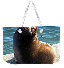 Sea Lion Basking In The Sun Weekender Tote Bag by Chalet Roome-Rigdon