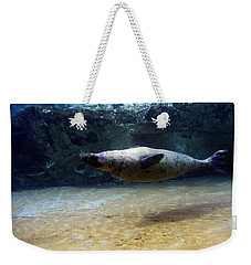 Weekender Tote Bag featuring the photograph Sea Lion Swimming Upsidedown by Verana Stark