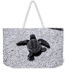 Weekender Tote Bag featuring the photograph Sea Turtle by Sebastian Musial