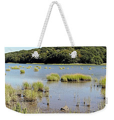 Weekender Tote Bag featuring the photograph Seagrass by Ed Weidman