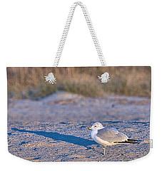 Seagull At Sunrise Weekender Tote Bag