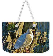 Weekender Tote Bag featuring the photograph Seagull In Shadow by Jean Goodwin Brooks