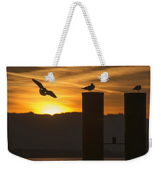 Weekender Tote Bag featuring the photograph Seagull In The Sunset by Chevy Fleet