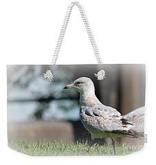 Seagulls 1 Weekender Tote Bag