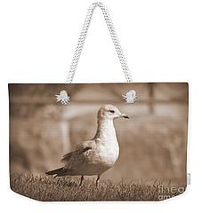 Seagulls 2 Weekender Tote Bag