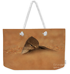 Seashell Solitude Weekender Tote Bag