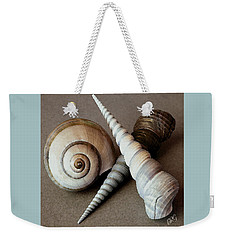 Weekender Tote Bag featuring the photograph Seashells Spectacular No 24 by Ben and Raisa Gertsberg