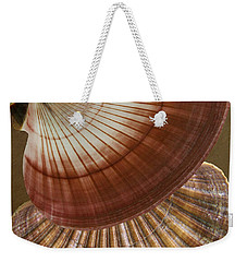 Weekender Tote Bag featuring the photograph Seashells Spectacular No 53 by Ben and Raisa Gertsberg