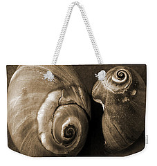Weekender Tote Bag featuring the photograph Seashells Spectacular No 6 by Ben and Raisa Gertsberg