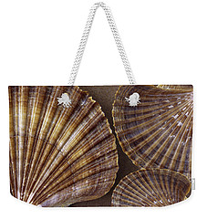 Weekender Tote Bag featuring the photograph Seashells Spectacular No 7 by Ben and Raisa Gertsberg