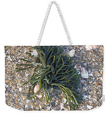 Weekender Tote Bag featuring the photograph Seaweed by Robert Nickologianis