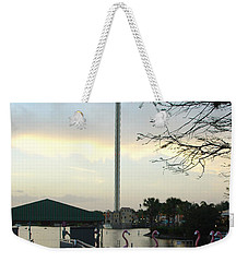 Weekender Tote Bag featuring the photograph Seaworld Skytower by David Nicholls