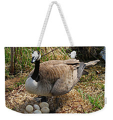 Weekender Tote Bag featuring the photograph See My Eggs by Elizabeth Winter