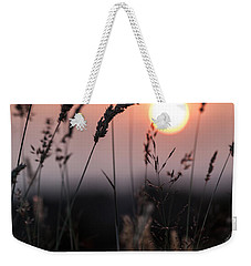 Seed Heads At Sunset Weekender Tote Bag