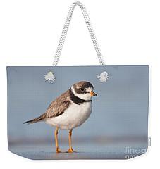 Semipalmated Plover Weekender Tote Bag