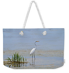 Weekender Tote Bag featuring the photograph Serene by Judith Morris