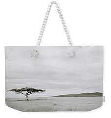 Serengeti Acacia Tree  Weekender Tote Bag by Shaun Higson