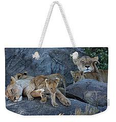 Serengeti Pride Weekender Tote Bag by David Beebe