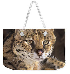 Weekender Tote Bag featuring the photograph Serval Portrait Wildlife Rescue by Dave Welling