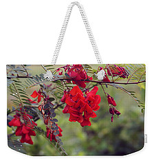 Sesbania Punicea Weekender Tote Bag by Kim Pate