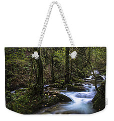 Weekender Tote Bag featuring the photograph Sesin Stream Near Caaveiro by Pablo Avanzini