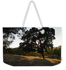 Weekender Tote Bag featuring the photograph Shade Tree  by Shawn Marlow
