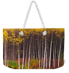 Shades Of Autumn Weekender Tote Bag