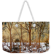 Weekender Tote Bag featuring the photograph Shadows In The Urban Jungle by Nina Silver