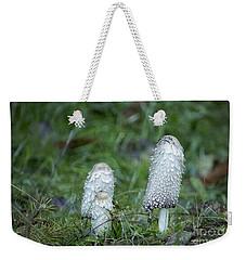 Shaggy Cap Mushroom No. 3 Weekender Tote Bag by Belinda Greb