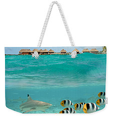 Over-under With Shark And Butterfly Fish At Bora Bora Weekender Tote Bag by IPics Photography