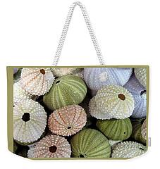 Shells 5 Weekender Tote Bag by Carla Parris