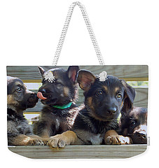 Shepherd Pups 5 Weekender Tote Bag by Aimee L Maher Photography and Art Visit ALMGallerydotcom