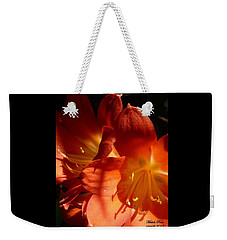 Shining Star Weekender Tote Bag