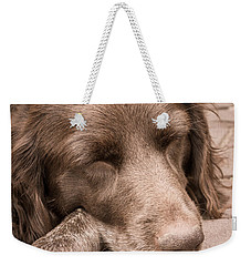 Shishka Dog Dreaming The Day Away Weekender Tote Bag