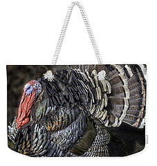 Short Feathers Tom Weekender Tote Bag by Lynn Palmer