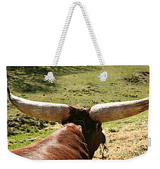 Weekender Tote Bag featuring the photograph Showing Off My Rack by Carol Lynn Coronios