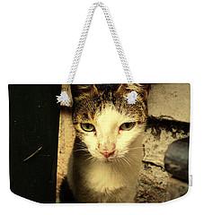 Shy Cat Weekender Tote Bag by Salman Ravish